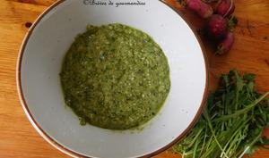 Pesto aux fanes de radis, roquette et noix