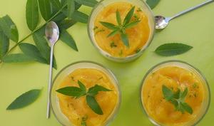Panna cotta verveine mangue