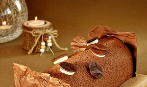 Bûche cacao, mangue, passion, vanille