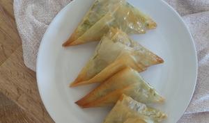 Samossas au four à la pâte filo, garniture de patate douce et de cavolo nero