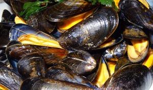 Moules de bouchot marinières