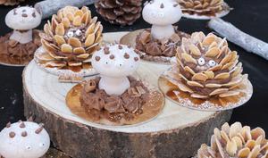 Le merveilleux champignon et la merveilleuse pomme de pin