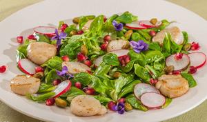 Salade de saint jacques aux pistaches et à la grenade