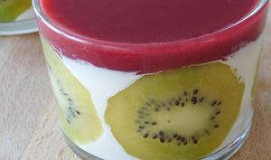 Panna cotta aux fruits rouges et kiwi