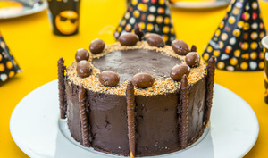 Layer cake chocolat pralinoise