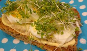 Sandwich à l'œuf avec du peps
