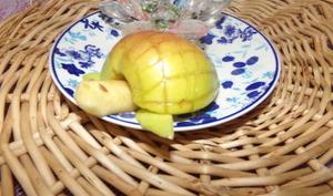 Tortue de pomme