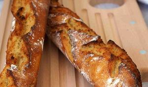 Baguettes Sans Pétrissage au Kamut