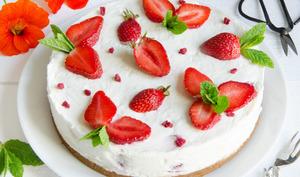 Cheesecake à la fraise sans cuisson