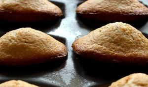 Madeleines à la farine de châtaigne et huile de noix