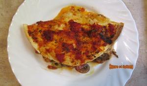 Tortillas façon pizza calzone