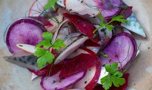 Maquereaux marinés, radis de couleur et betterave