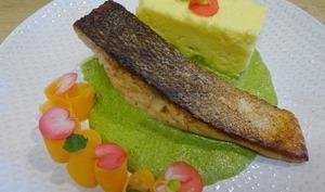 Pavés de saumon cuits à l'unilatéral sur crème de cresson