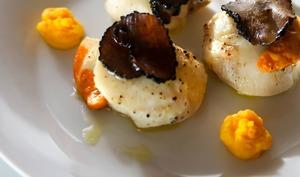 Coquilles Saint Jacques snackées, truffe noire et mousseline de carottes