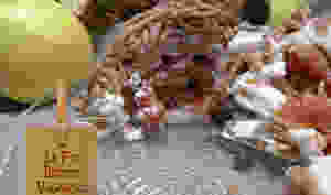 Mont-Blanc coings main de Bouddha