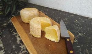 Camembert maison