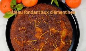 Gâteau fondant aux clémentines
