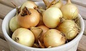 Eplucher les oignons grelots