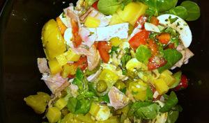 Salade complète pour un pique-nique