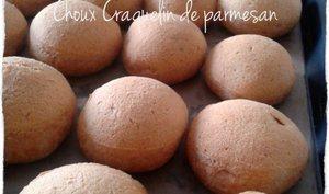 Choux salé Craquelin de Parmesan