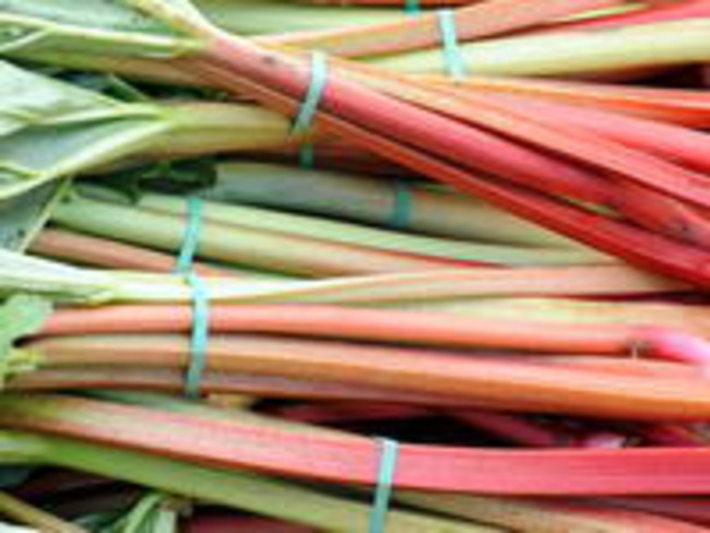 Compote de rhubarbe