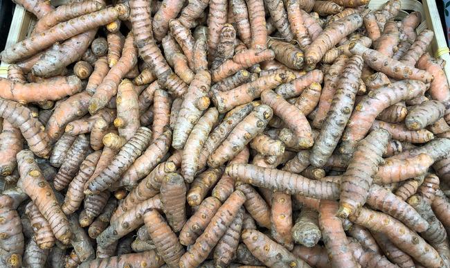 Cagette de rhizomes de curcuma bio