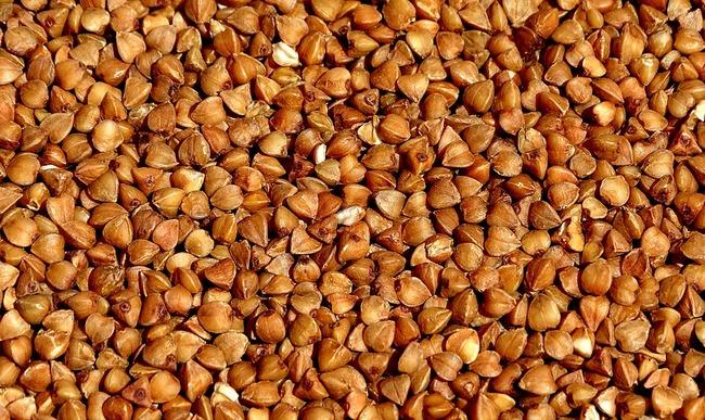 Graines de sarrasin