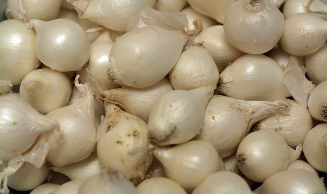 Oignons grelots