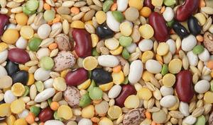 Légumes secs en mélange
